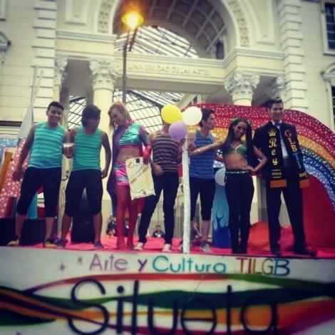 Orgullo y diversidad sexual 2014 - orgullo glbti - orgullo gay guayaquil - asociación silueta x (11)