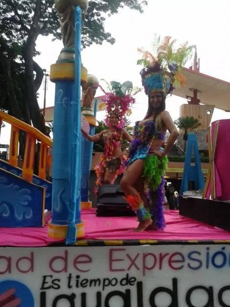 Orgullo y diversidad sexual 2014 - orgullo glbti - orgullo gay guayaquil - asociación silueta x (20)