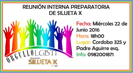Reunión Prepratoria interna del Orgullo LGBTI 2016 - Silueta X