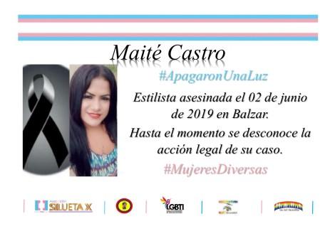 Campaña por el día internacional de la Mujer de la Asociación Silueta X y la Federación Ecuatoriana de Organizaciones LGBT
