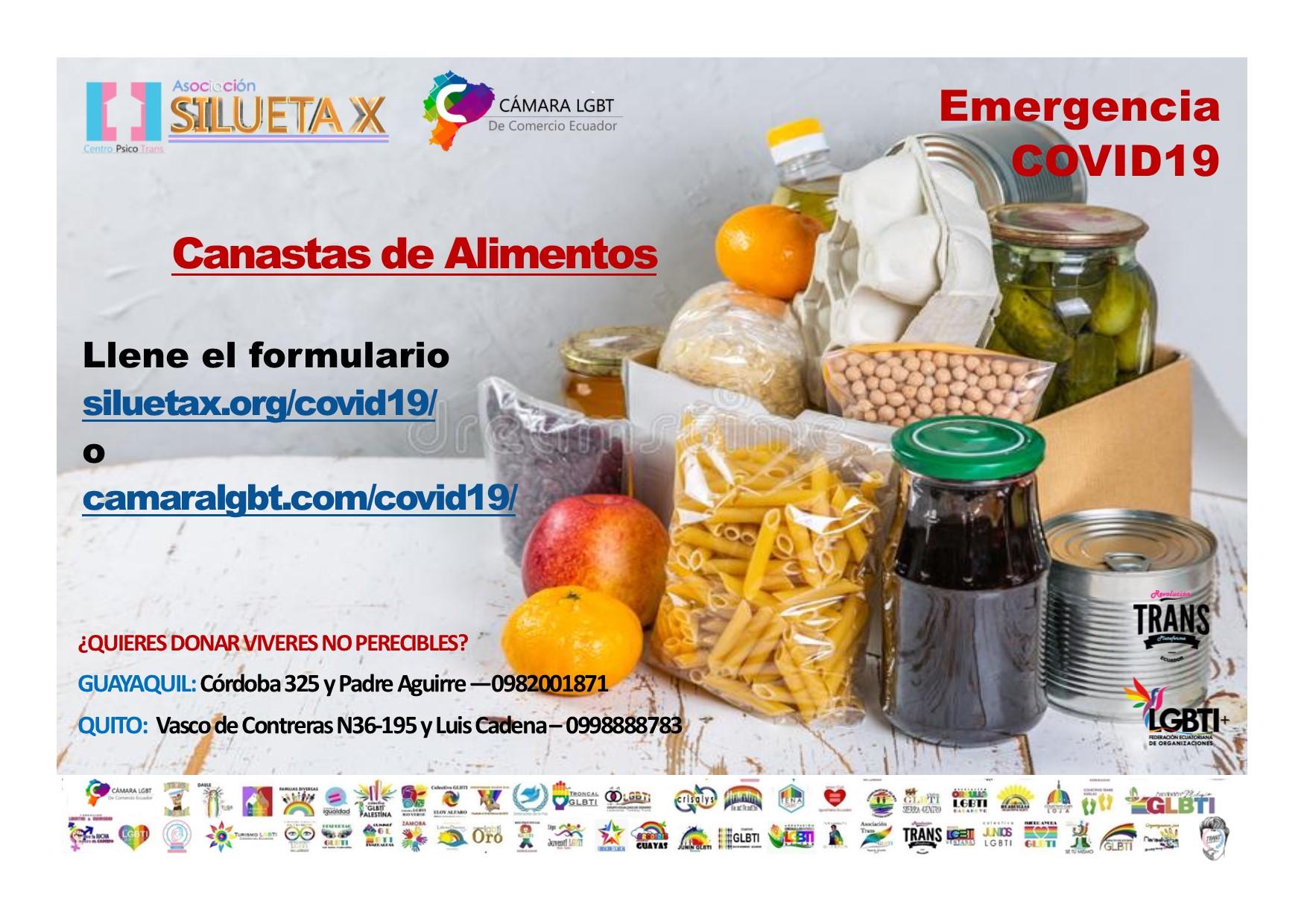Canasta de Alimentos para LGBT en emergencia Covid19